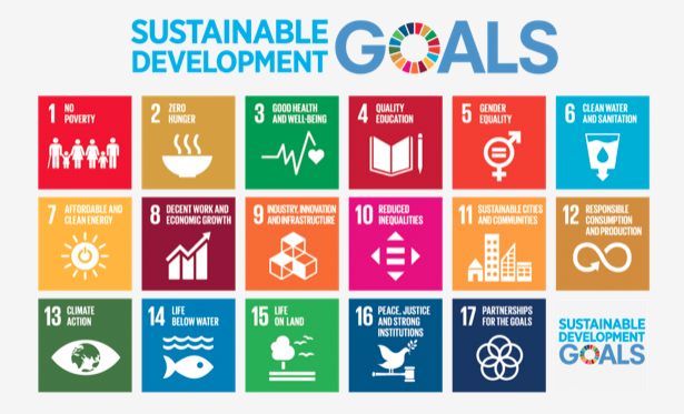 Sustainable Development Goals (SDGs) Naciones Unidas